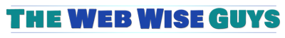 the web wise guys logo